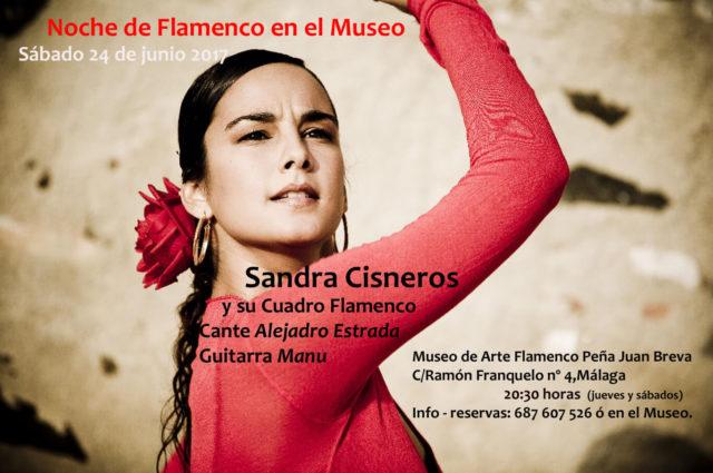 flamenco sandra cisneros