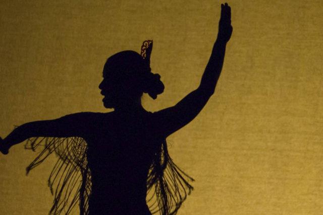 bienal de flamenco malaga
