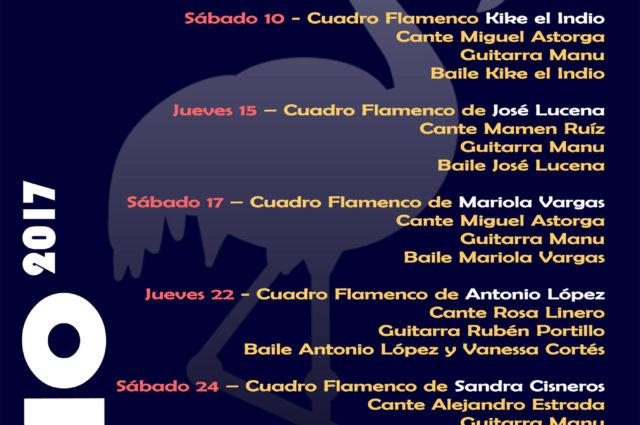 noches de flamenco en el museo