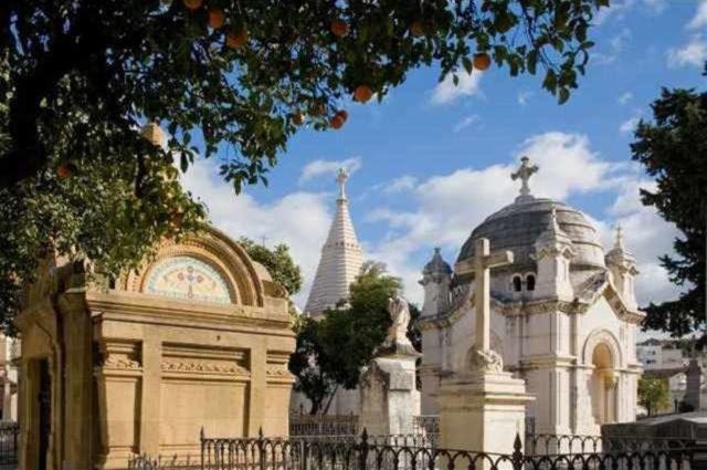 Cementerio historico de san miguel